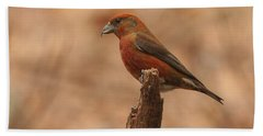 Red Crossbill Bath Towel