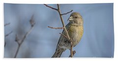 Red Crossbill Female Hand Towel