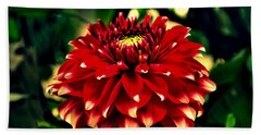 Red Dahlia Bath Towel by Salman Ravish