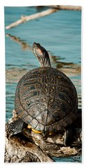 Red Eared Slider Xxl Hand Towel