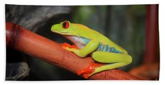 Red Eyed Tree Frog Hand Towel by Cathy  Beharriell