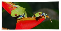 Red Eyed Tree Frogs Bath Towel by Bob Hislop