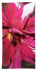 Red Flower In Bloom Hand Towel