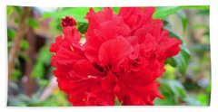 Bath Towel featuring the photograph Red Flower by Sergey Lukashin