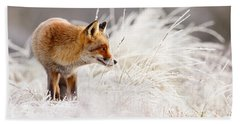 Red Fox And Hoar Frost _ The Catcher In The Rime Hand Towel by Roeselien Raimond