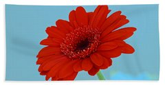 Red Gerbera Daisy Hand Towel by Scott Carruthers