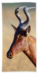 Red Hartebeest Portrait Hand Towel