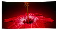 Red Hibiscus Tropical Flower Wall Art Bath Towel