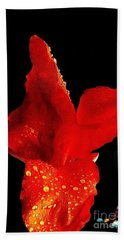 Hand Towel featuring the photograph Red Hot Canna Lilly by Michael Hoard