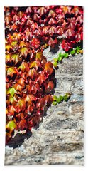 Bath Towel featuring the photograph Red Ivy On Wall by Silvia Ganora