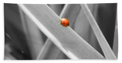 Red Ladybird Bath Towel by Chalet Roome-Rigdon