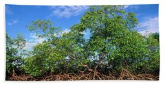 Red Mangrove East Coast Brazil Hand Towel