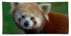 Red Panda Hand Towel