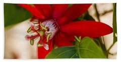 Bath Towel featuring the photograph Red Passion Flower by Jane Luxton