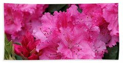 Red Rhododendrons Hand Towel