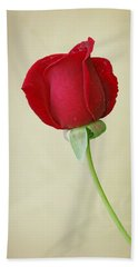 Red Rose On White Hand Towel by Sandy Keeton