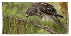 Red Shouldered Hawk Photo Hand Towel by Meg Rousher
