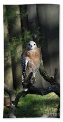 Red Shouldered-hawk Bath Towel