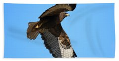 Red-tail Flight Hand Towel by Mike Dawson