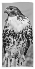 Red Tail Hawk Youth Black And White Bath Towel