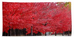 Red Tree Line Hand Towel