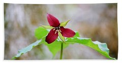 Red Trillium Bath Towel by David Porteus