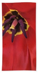 Red Tulip Detail Hand Towel