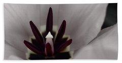 Red Tulip In Black N White Hand Towel