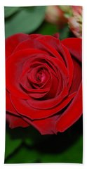 Red Velvet Rose Hand Towel by Connie Fox