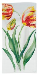 Red Yellow Parrot Tulip Group Hand Towel