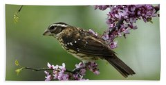 Redbud With Grosbeak Hand Towel