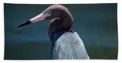 Reddish Egret 3 Bath Towel