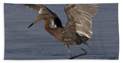 Reddish Egret Fishing Hand Towel by Meg Rousher