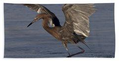 Reddish Egret Fishing Bath Towel by Meg Rousher