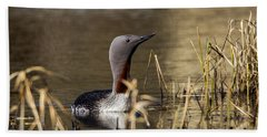 Redthroated Loon Bath Towel