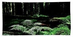 Redwood Fern Hand Towel