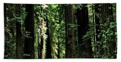Redwood Highway Hand Towel