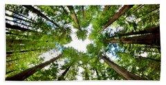 Redwood Sky Hand Towel