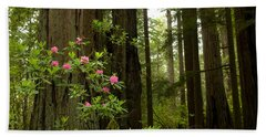Redwood Trees And Rhododendron Flowers Hand Towel