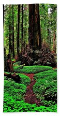 Redwoods Wonderland Bath Towel