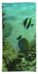 Reef Life Hand Towel