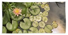Reflected Light Upon Flowering Water Lilies Hand Towel