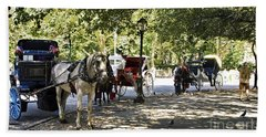Rest Stop - Central Park Hand Towel by Madeline Ellis