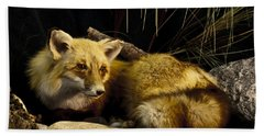 Resting Fox Bath Towel