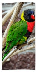 Bath Towel featuring the photograph Resting Lory by Sennie Pierson