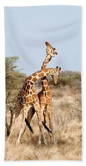 Reticulated Giraffes Giraffa Bath Towel