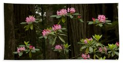 Rhododendron Flowers And Redwood Trees Hand Towel