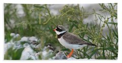 Ringed Plover On Rocky Shore Hand Towel