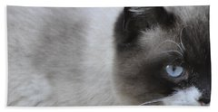 Hand Towel featuring the photograph Ringtail by Sarah McKoy