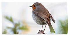 Bath Towel featuring the photograph Robin On A Pole by Jeremy Hayden